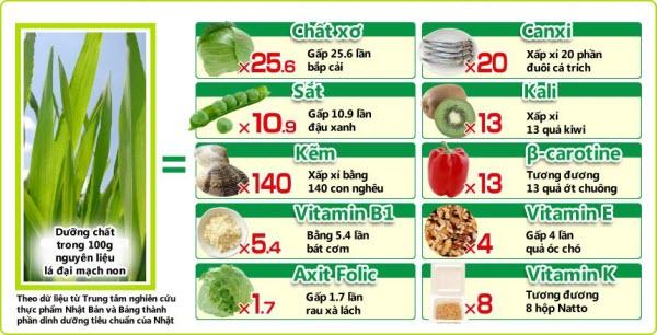 Thành phầm dinh dưỡng của lá đại mạch non