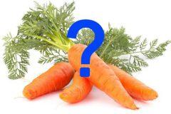 Trẻ bị táo bón có nên ăn cà rốt không ?